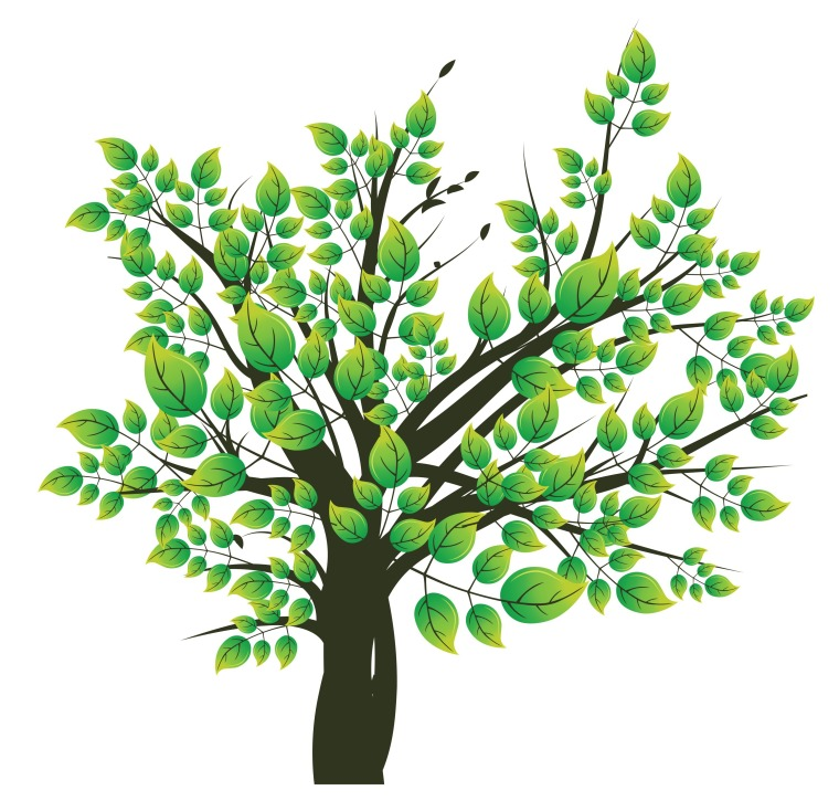 abstract-illustration-of-a-tree-with-lots-of-leaves_zkplR7U__L